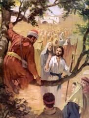 vangelo: lc 19,1-10,liturgia della parola di domenica,zaccheo,sicomoro,devo fermarmi a casa tua,salvare ciò che era perduto,3 novembre