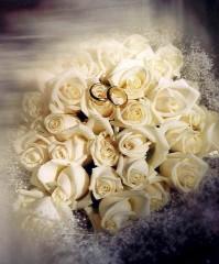 matrimonio, corso matrimoniale, preghiera per matrimonio, Dietrich Bonhoeffer